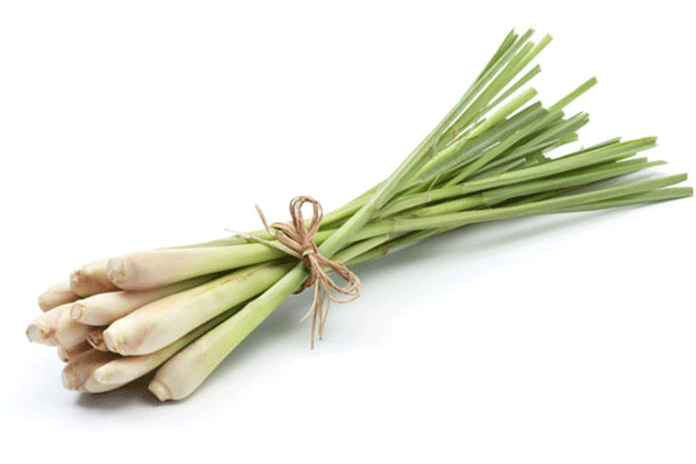 things that you can do with lemongrass at home