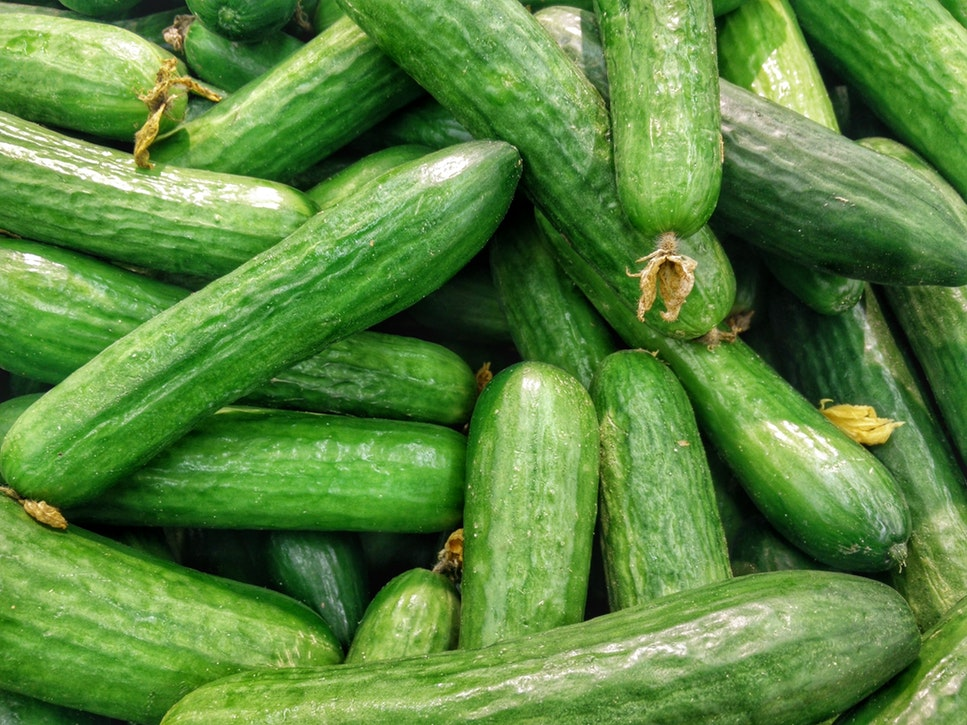recipes of cucumber