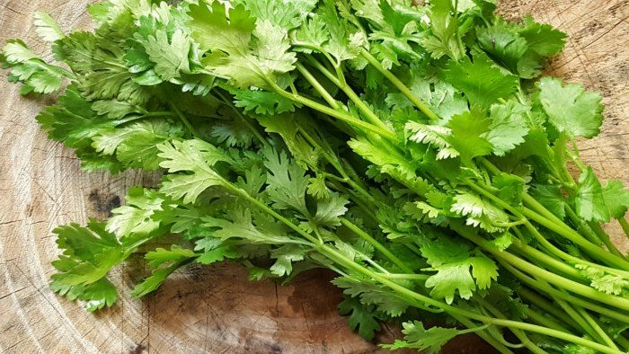 home remedies of coriander
